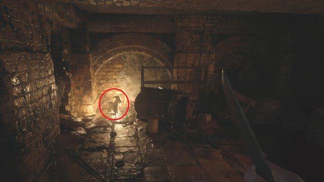 Wächterziege im Keller des Schlosses.