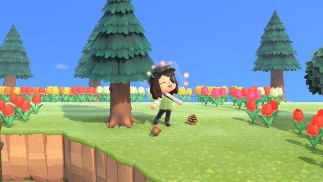 Eichel und Zapfen kündigen die neue Jahreszeit in Animal Crossing: New Horizons an.