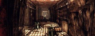 Fallout 76: Spieler glitchen in Sperrbereich und fürchten Bann