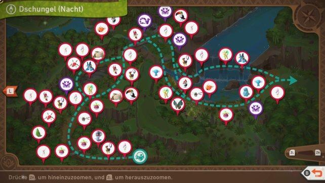 """Karte mit Pokémon-Fundorten auf der Strecke """"Dschungel (Nacht)""""."""