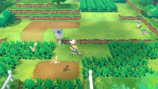 Wilde Pokémon sind in der Spielwelt sichtbar. Das hievt die Atmosphäre auf ein neues Level.