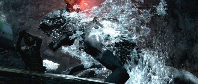 Und plötzlich springt ein riesiger Köter aus dem Wasser.