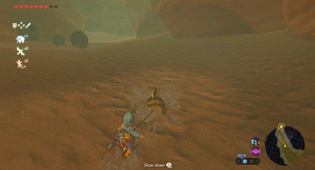 Sandrobben sind die beste Alternative, um die weite Wüste zu erkunden.