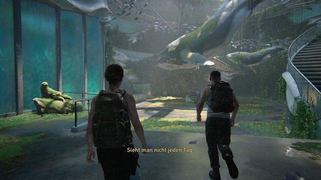 Arbeitet euch durch das Aquarium, um in den noch immer beeindruckend schönen Eingangsbereich zu gelangen.