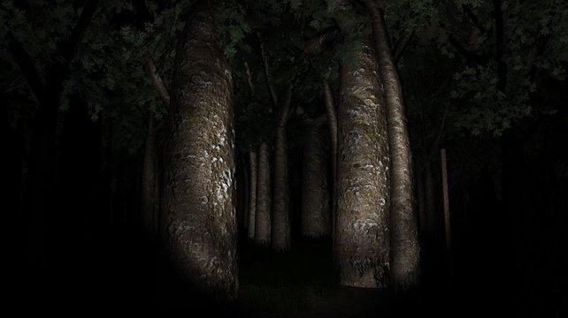 Wald, Taschenlampe, Einsamkeit: Slender weiß, wie man unheimliche Atmosphäre erzeugt.
