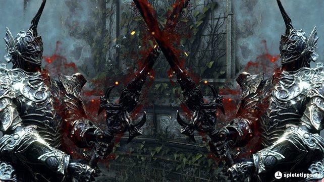 Regel Nr.1: Ihr könnt die Multiplayer-Funktionen von Demon's Souls nur dann nutzen, wenn ihr online spielt!
