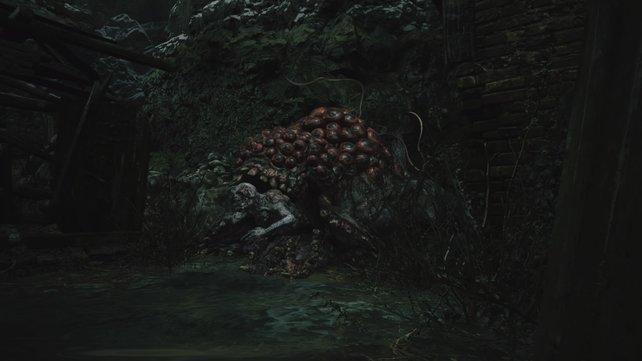Nur der weiße Körper von Moreau ist verwundbar, seine äußere Hülle absorbiert jeden Schaden.