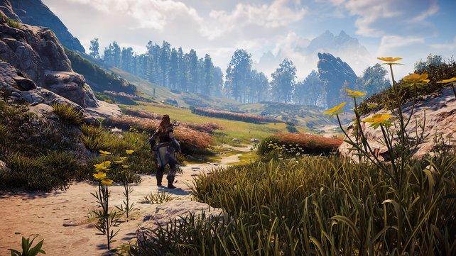 Das beste Vorzeigespiel für die PS4 Pro: Die Grafik von Horizon - Zero Dawn lässt auch PC-Zocker neidisch werden.