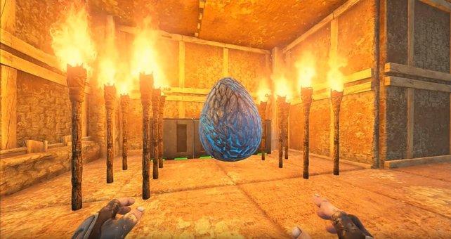 Die Drachen-Eier haben unterschiedliche Farben, an denen ihr erkennen könnt, welche Wyvern-Art später daraus schlüpft. Hierbei handelt es sich um einen Blitz-Wyvern, dessen Ei schon schön mit Fackeln und Klimaanlagen gewärmt wird.