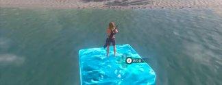 Panorama: Spieler fängt Fische in Breath of the Wild mit einfachem Trick