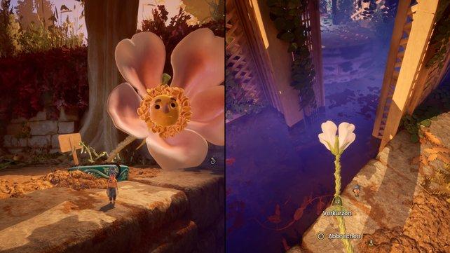 Als Blume sieht Cody nicht nur unglaublich hübsch aus, sondern ist auch unglaublich praktisch. Mit Hilfe der Blätter kann er May einen Weg über das Wasser zaubern.