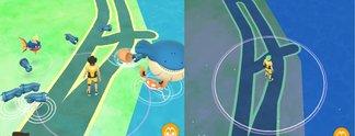 Panorama: Einige Spieler können seit 7 Monaten keine Pokémon mehr fangen
