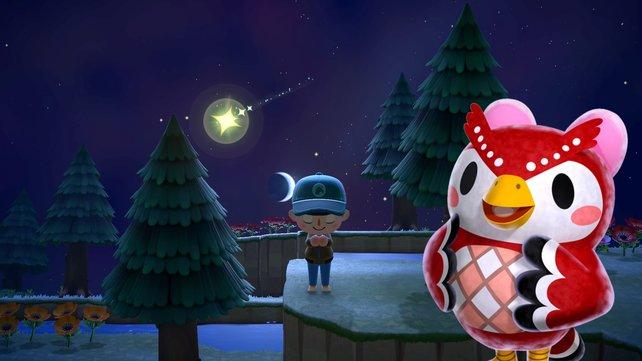So sieht es aus, wenn eine Sternschnuppe in Animal Crossing: New Horizons vom Himmel fällt.