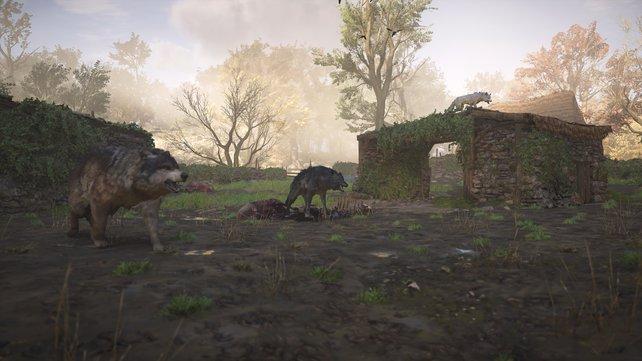 Die Legendären Tiere sind im Kampf besonders harte Brocken.