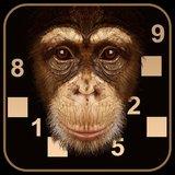 Beat the Chimp
