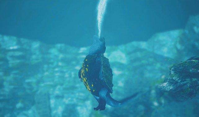 Nein, es ist nicht Godzilla, sondern der nordwestliche Weltenfresser, der unter Wasser lebende Trübschnauber.