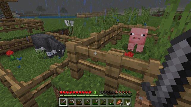 Neben Pferden, Maultieren und Eseln können auch Schweine geritten werden. Allerdings benötigt ihr für deren Steuerung noch weitere Ausrüstung.