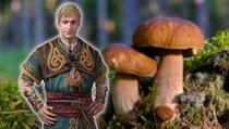 The Witcher: Monster Slayer: Die große Pilzsuche