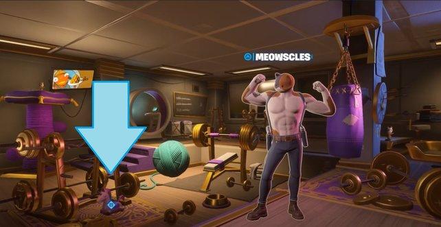 Das Einhornkuscheltier von Deadpool findet ihr in Muskelkaters Zimmer.
