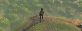 Panorama: The Legend of Zelda - Breath of the Wild: Jim Sterlings Webseite nach veröffentlichter Spiel-Wertung unter Beschuss