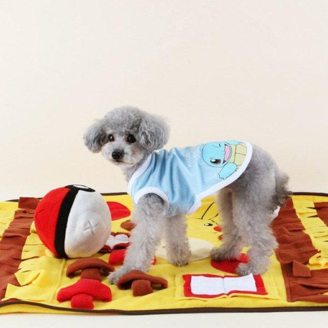 Der Hund von Welt trägt heute Schiggy. Quelle: Dasom/The Pokémon Company