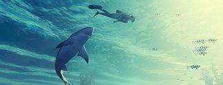 In diesem irren Spiel seid ihr der Hai