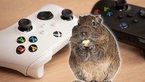 <span>Xbox:</span> Pärchen nutzt Konsole, um krankes Haustier zu retten