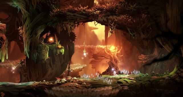 Diese Bäume verleihen Ori neue Kräfte.