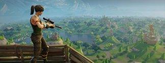 Fortnite-Petition: Battle-Royale-Spiel soll verboten werden