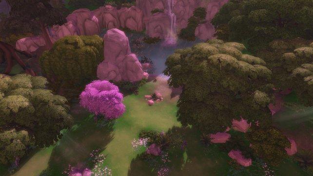 Wie in einer Feenwelt, erstrahlt die Waldlichtung in vielen lieblich rosa Farben und lädt zum Entspannen ein.