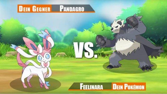 Stellt euch der ultimativen Pokémontrainer-Herausforderung.