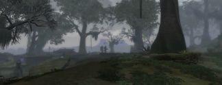 Skywind: Frische Szenen aus der Skyrim-Modifikation