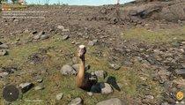 Far Cry 6: Schocktherapie: Fundorte der Pelikane