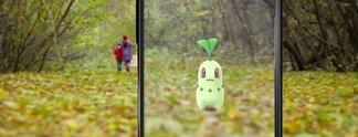 """Panorama: Der """"Pokémon-Onkel"""" legt nun so richtig los"""