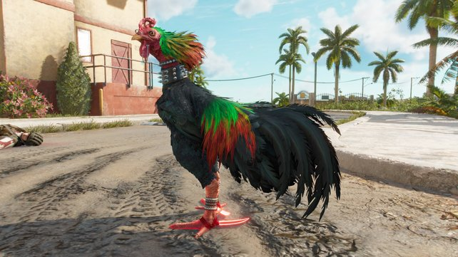 Damit ihr den Hahn Chiharrón freischalten könnt, müsst ihr diesem bei seiner Verwüstungstour begleiten.