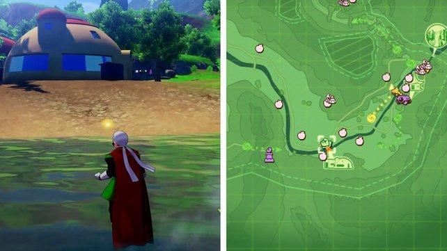 Fundort der Flussgarnele in der Nähe von Son-Gokus Haus.