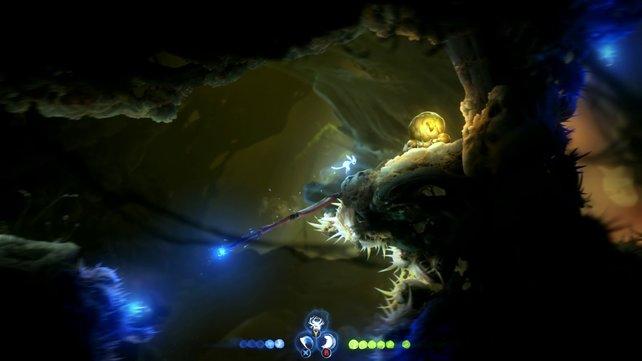 In diesen leuchtenden Knollen stecken hilfreiche Glühwürmchen.