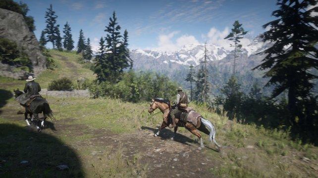 Ob im Sattel oder zu Fuß - mit eurem Pferd interagieren, könnt ihr in beiden Situationen.