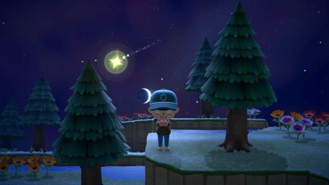 Sternschnuppen tauchen nicht jede Nacht auf, sondern sind ein besonderes Ereignis.