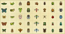 Alle Insekten mit Fundorten