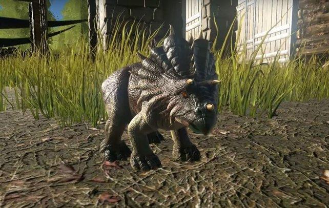 Dieser kleine, süße Baby-Dino ist gerade geschlüpft - Kümmert euch gut um das Kleine, es hat viel HUnger!
