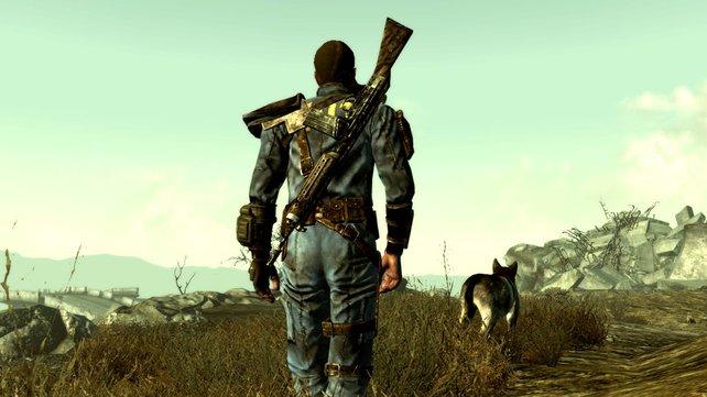 Dogmeat ist zwar schon aus früheren Fallout-Teilen bekannt, doch spätestens seit Fallout 3 hat er einen besonderen Stellenwert bei Fans der Reihe.