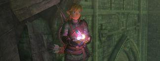 Panorama: Zelda - Breath of the Wild: Spieler findet Bug, der den Comicstil verschwinden lässt