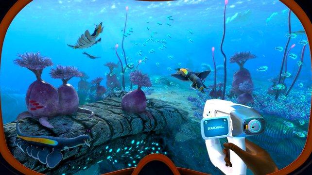 Subnautica: Below Zero entführt euch in traumhafte Unterwasserwelten.