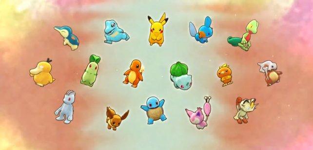 Ihr habt die Qual der Wahl: Für welches Starter-Pokémon werdet ihr euch entscheiden?