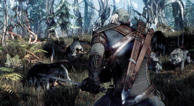 Der unbekannte Ort in The Witcher 3 belohnt mit einem wirklich ansehnlichen Ausblick.
