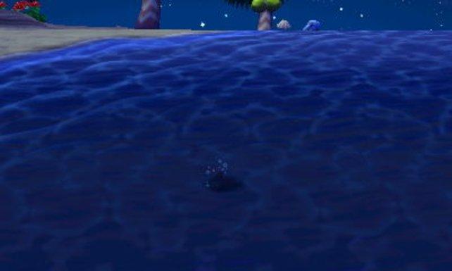 Seht ihr diesen Schatten? Taucht an dessen Stelle ab und schwimmt ihm schnell hinterher.