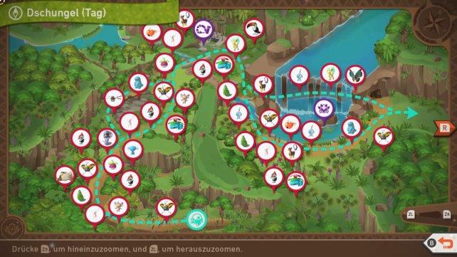 """Karte mit Pokémon-Fundorten auf der Strecke """"Dschugel (Tag)""""."""