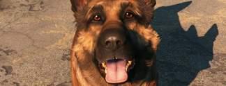 World Dog Awards: Gewinnt Dogmeat, D-Dog oder doch Barbie?