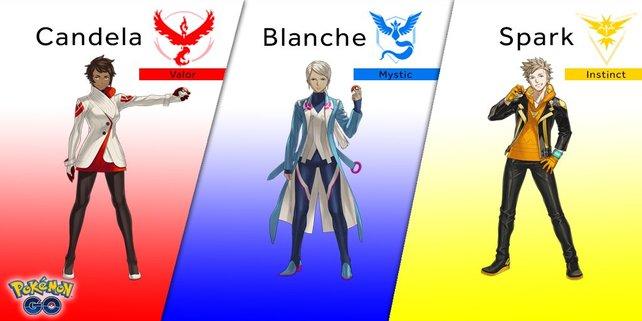 Könnten die Team-Farben etwas mit Farbeagle zu tun haben?